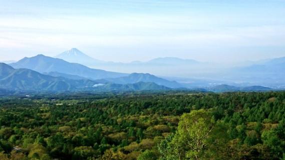 美し森展望台からの眺望(5月下旬)